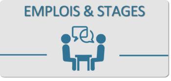 bloc emploi et stages 2